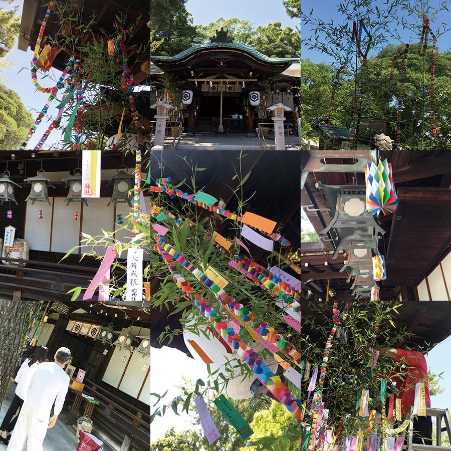 芦屋神社 七夕飾りつけ